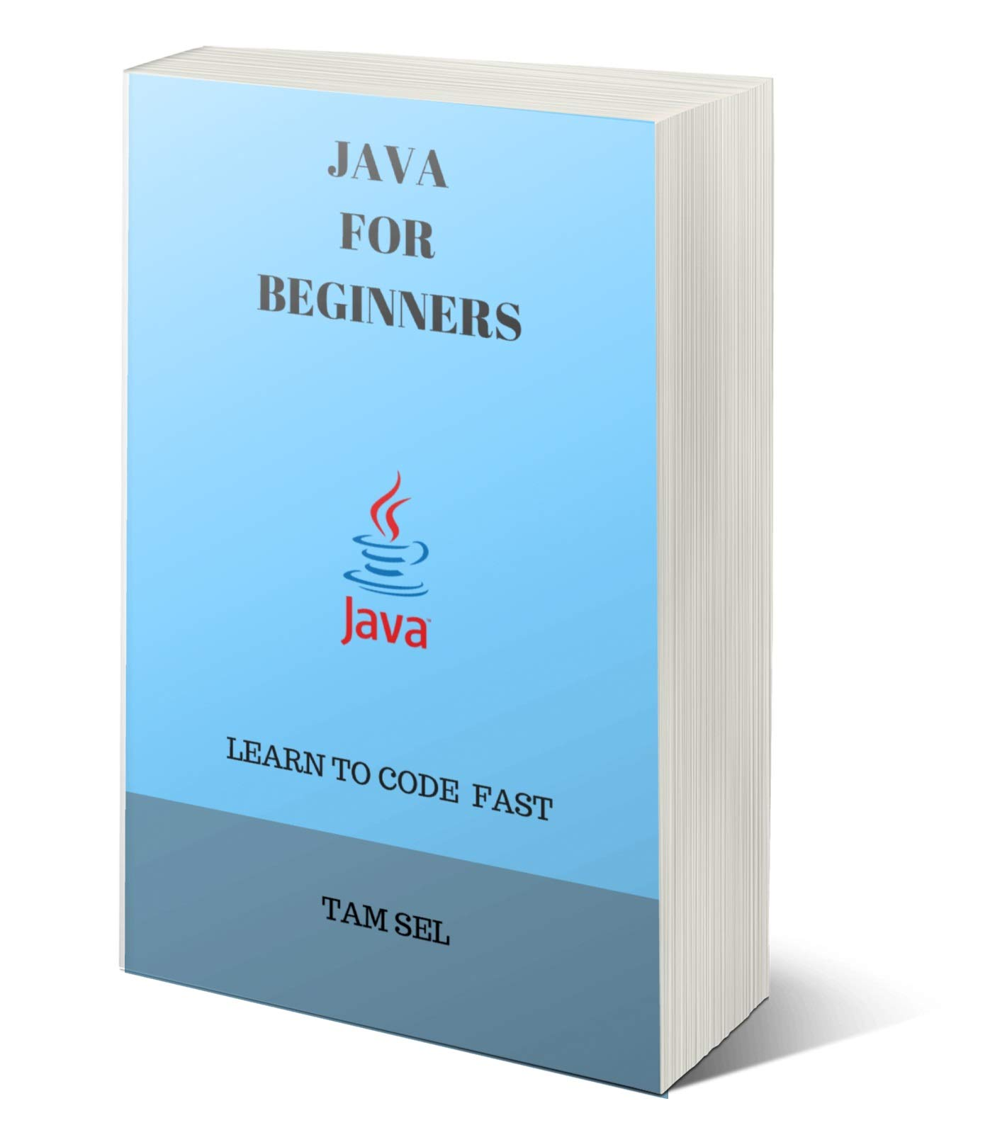 JAVA FOR BEGINNERS  LEARN TO CODE FAST  English Edition