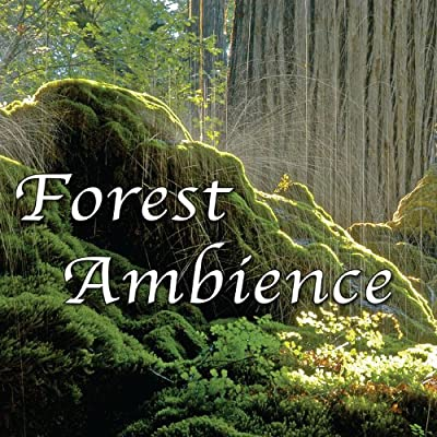 Forest Ambience - Healing Nature Sounds for Relaxation, Massage Therapy, Reiki and Sleep