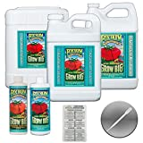FOXFARM GROW BIG HYDRO NUTRIENT VEG GROWTH FERTILIZER + TWIN CANARIES CHART & PIPETTE - 2..5 GAL GALLON