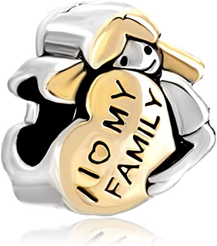 pandora love and family charm