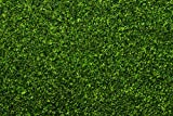 Bachmann Industries 32903 Grass Mat - Meadow - for Use with All Scales Grass Mat, 100' x 50', Meadow Green