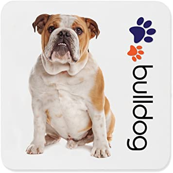Dimension 9 Bulldog Coaster, White by Dimension: Amazon.es: Hogar