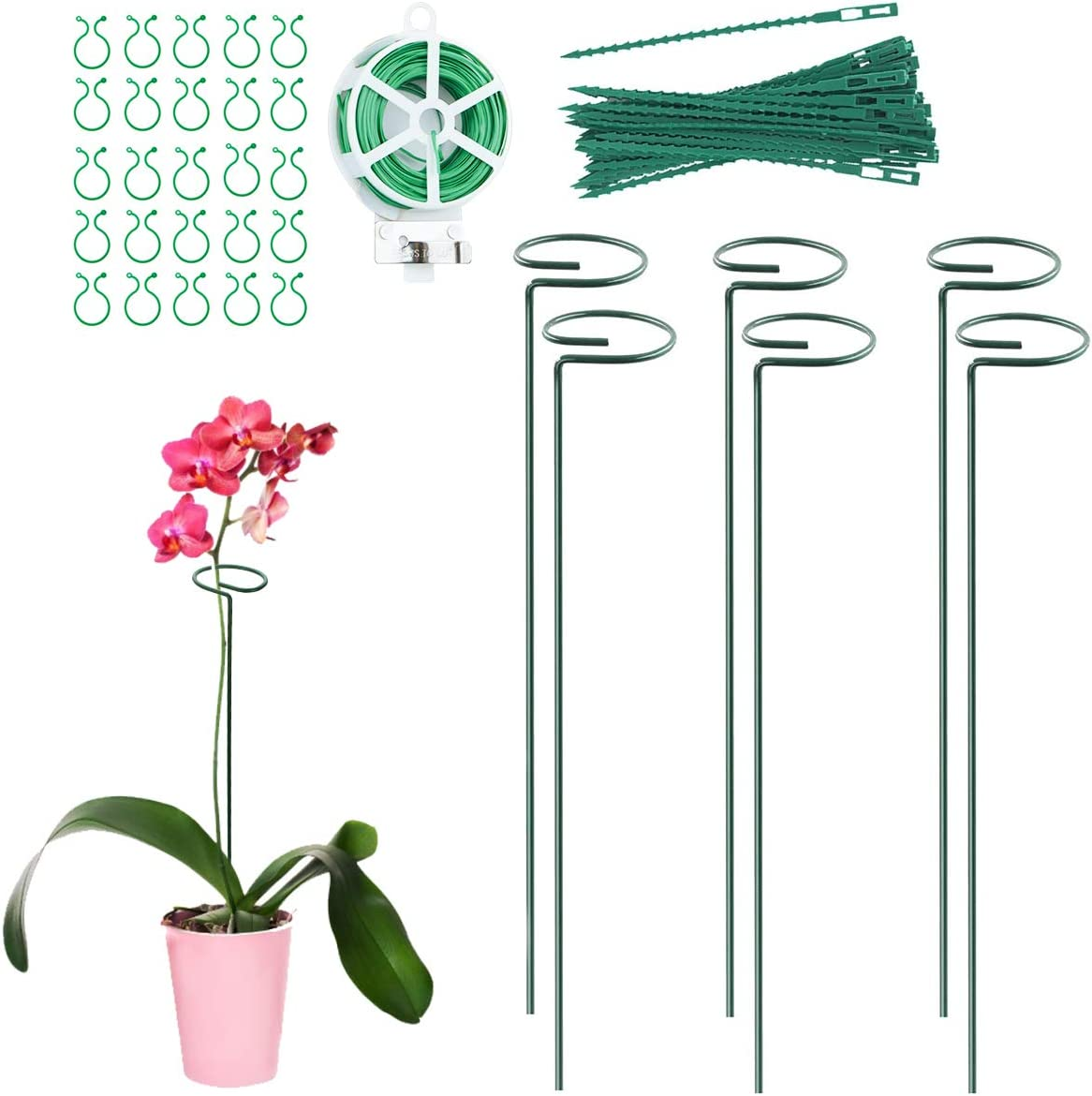 JUSONEY Garden Plant Stakes, 6 Pcs Single Stem Support Stake Plant Cage Support Rings, 20Pcs Clips and Twist Ties, 98FT Garden Management Strips,Perfect for Tomatoes Orchid Lily Peony Rose Flower Stem
