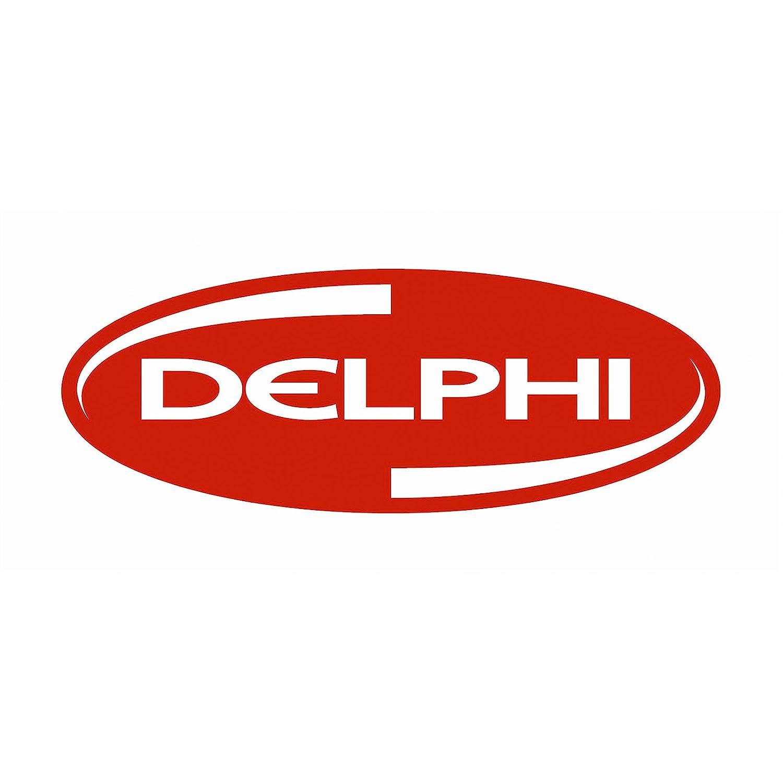 Delphi EG10395-12B1 Egr Valve
