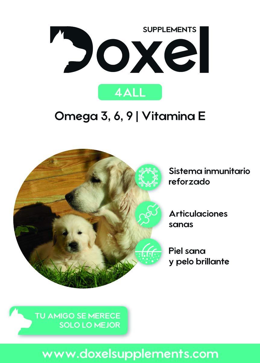Doxel 4all-500ml Aceite para perros| Suplemento natural | Sistema Inmunitario reforzado| Articulaciones sanas| Pelo brillante| Piel sana| Ácidos grasos ...