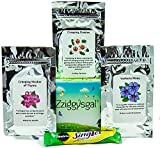 Zziggysgal – Ground Cover Seeds (Set of 3 Varieties) – Includes Creeping Daisies, Verbena Moss & Mother of Creeping Thyme – Perfect for Vibrant Garden Walkways and Decorations