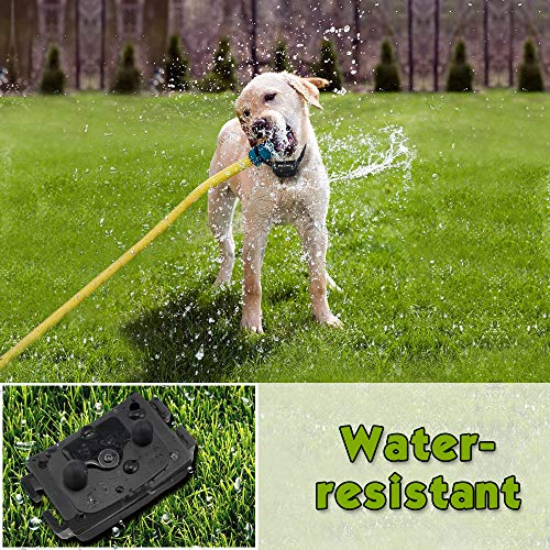 Petrainer-Upgraded-Dog-Shock-Collar-with-Remote-Dog-Training-Collar-BeepVibrationElectric-Shock-Dog-Collar-Rainproof-Rechargable-1000ft-Remote-Range