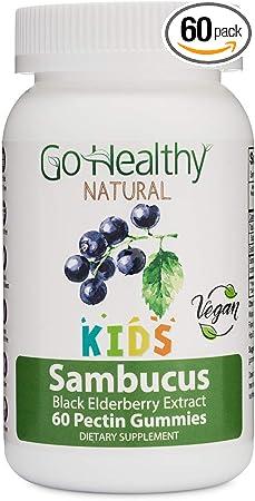 Go Healthy Natural Vegan Sambucus Elderberry Gummies for Kids
