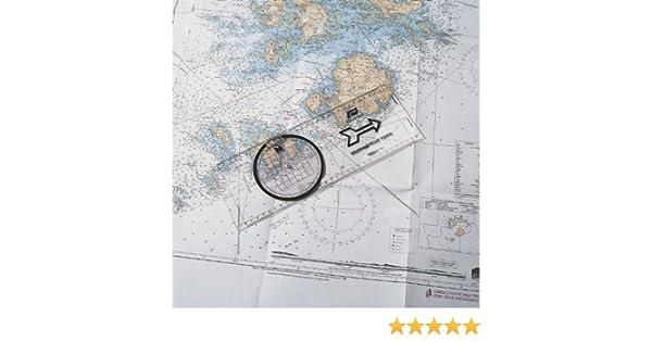 PLASTIMO PL29521, Unisex-Adult, Standard, Normal: Amazon.es ...