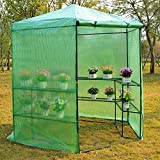 7.5' Portable Hexagonal Walk In Greenhouse 3-Tier Shelves Gardening Flower