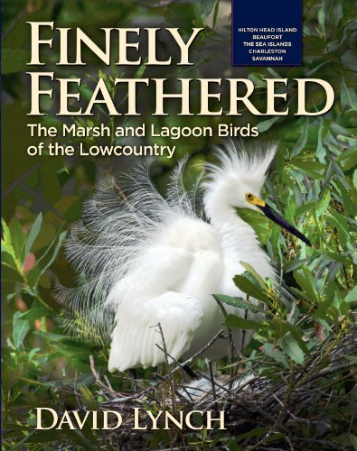 "Featuring:  • Over 250 color photos  • Thirty-two species of birds  • Easy to read descriptive text • A wonderful addition to any birder's collection   ""Ideal for anyone who spends time in the South and who cannot identify area birds. It should have ..."