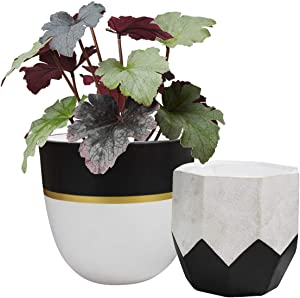 Ceramic Plant Flower Pots Indoor - 6.3 Inch Pack 2 Modern White Geometric Octagon & Round Orchid Cactus Herb Planter Pots for Home Decor, Matte Finish (No Drainage Hole)
