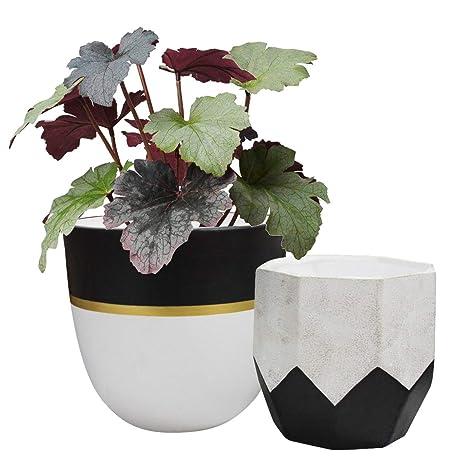 7279088676 Amazon.com : Ceramic Plant Flower Pot - 6.3
