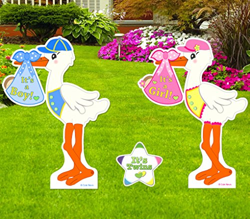 Stork Girl Birth Announcement (Cute News Twin Stork Yard Baby Signs with It's Twins Star Lawn Announcement (Boy and Girl) 4 Feet Tall. Baby Shower Birth Twin Yard Signs)