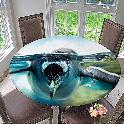 Mikihome The Round Table Cloth Penguin is Under Water Looking at Camera for Birthday Party, Graduation Party 47.5