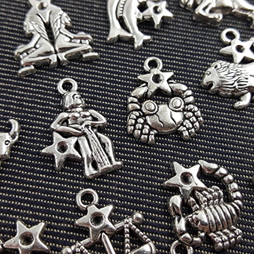 12 Antique Silver Plated Zodiac all Constellation Charm Zinc Alloy Pendant (NS523 - Charm Plated Zodiac