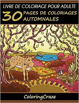 Livre De Coloriage Pour Adulte 30 Pages De Coloriages
