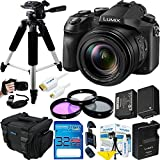 Panasonic Lumix DMC-FZ2500 Digital Camera - Expo Bundle