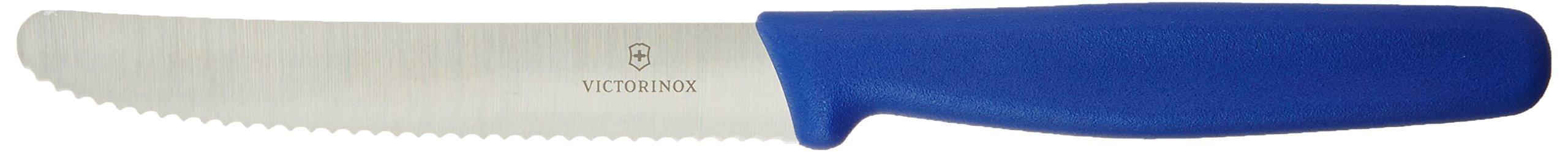 Victorinox Steak Serrated Round Tip Polypropylene Handle, 4.50'', Blue