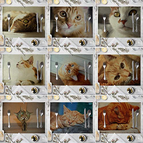 memorytime Cute 3D Cat Print Placemat Pad Linen Dining Table Insulation Mat Home Decor Kitchen Dining Supplies - 6# by memorytime (Image #4)