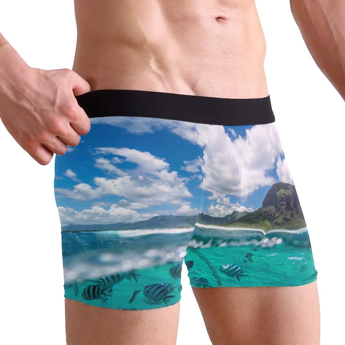 MOFEIYUE Mens Boxer Briefs Tropical Fish Ocean Animal Soft Short Underpants Underwear for Men Boys