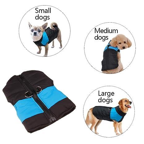 Huhuswwbin Cute Little Pet Dog Abbigliamento Caldo Pet Cucciolo di Cane  Impermeabile Cappotto Giacca Invernale Gilet. Scorri sopra l immagine per  ... aeaa8875593
