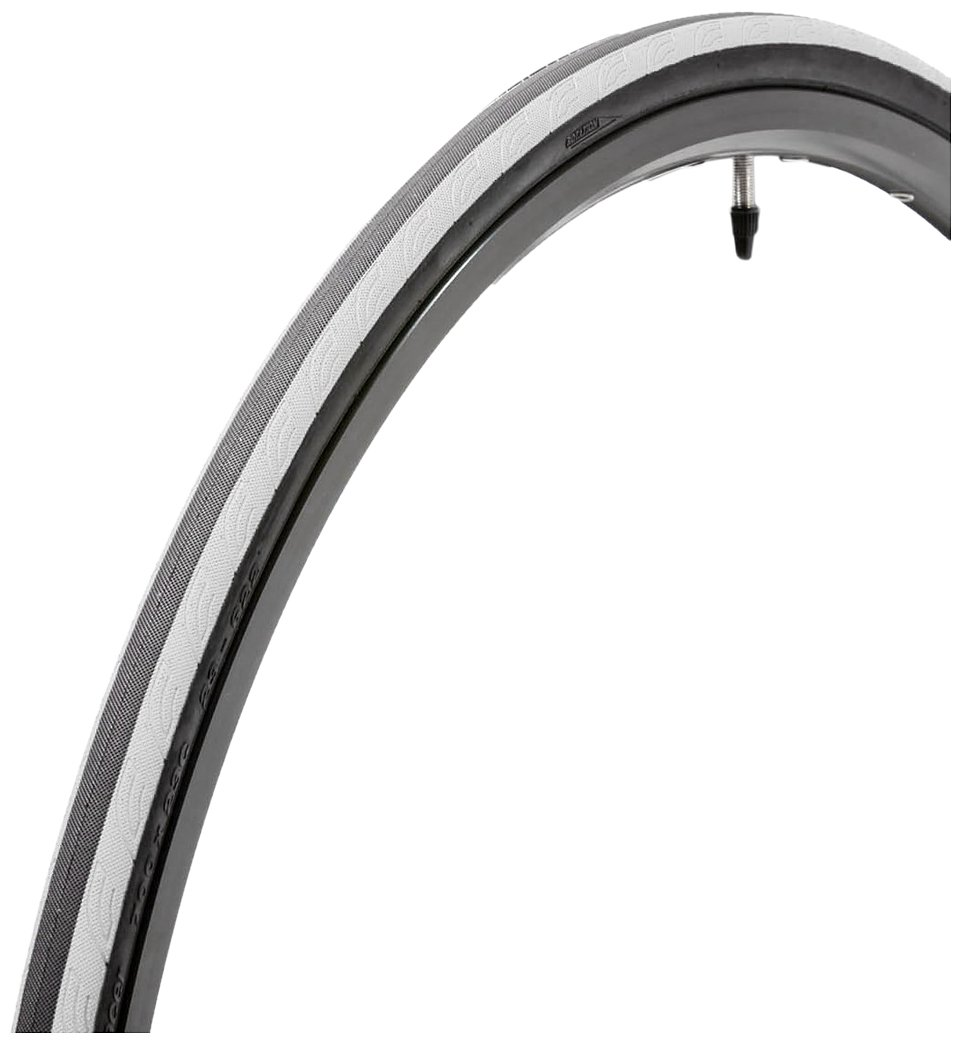 panaracer Catalyst Sport Tire with Folding Bead