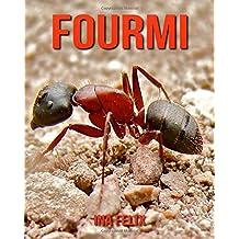 Fourmi: Le livre des Informations Amusantes pour Enfant & Incroyables Photos d'Animaux Sauvages – Le Merveilleux Livre des Fourmi pour enfants âgés de 3 à 7 ans