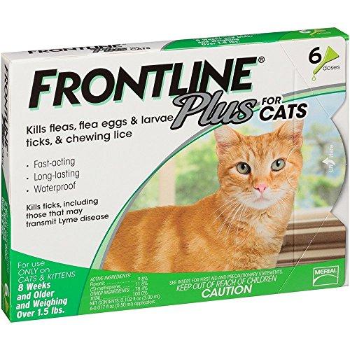Buy cat flea and tick treatment