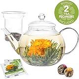 Teabloom Glass Teapot with Infuser - 34 Oz Heat Resistant Borosilicate Glass Teapot - Great for Flowering Tea and Loose Leaf Tea - 2 Bonus Tea Flowers!