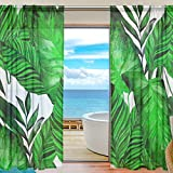 SEULIFE Window Sheer Curtain, Tropical Palm Leaf Leaves Voile Curtain Drapes for Door Kitchen Living Room Bedroom 55x84 inches 2 Panels