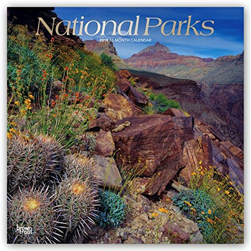 America Calendar - National Parks 2019 12 x 12 Inch Monthly Square Wall Calendar with Foil Stamped Cover, USA United States of America Scenic Nature