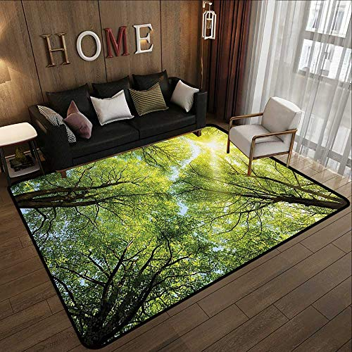 Outdoor Camping Rugs,Farm House Decor Collection,The Warm Spring Sun Shining Through The Canopy of Tall Beech Trees Romantic Scene,Green Yell 59