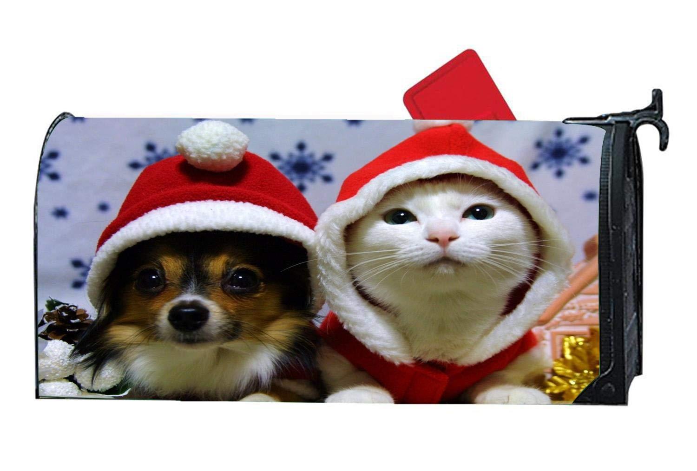 Christmas Cat Dog Santa Hat