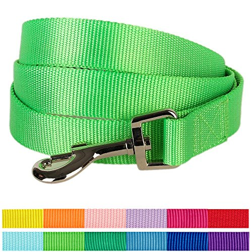 "Blueberry Pet 12 Colors Durable Classic Dog Leash 4 ft x 1"", Neon Green, Large, Basic Nylon Leashes for Dogs"