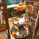 FUNARTY Mixed Pumpkin Set