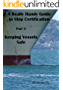 A Really Handy Guide to Ship Certification-Part 3: Keeping Vessels Safe (Really Handy Guides to Ship Certification) (English Edition)