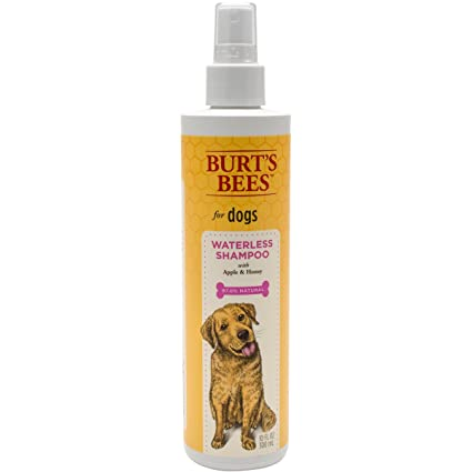 c9972795e Pet Shampoos   Amazon.com  Burt s Bees for Dogs Natural Waterless ...