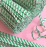 2000pcs 4'' Paper Green Stripe Twist Ties