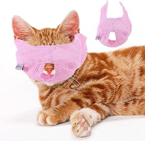 NEEKY 5 St/ücke Lustig Mund/_schutz mit Motiv Tiermotiv Katzen Atmungsaktiver Stoff Waschbar Wiederverwendbar Staubdicht Mund und Nasenschutz Halstuch