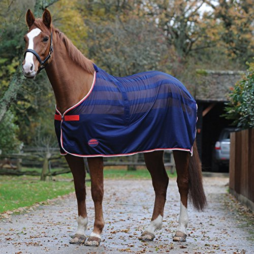 Weatherbeeta Scrim Standard Neck Cooler Rug 6ft Navy Weatherbeeta Cooler