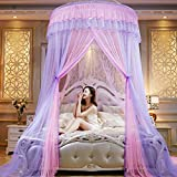 TYMX Mosquito Net Canopy Insect Netting Princess Butterfly Dome Bed Lace Tents Diameter 1.5M Adult Baby Kids Bedroom Games Anti-Mosquito And Insect-Proof Mosquito Nets Fit Crib Twin Full Large Bed (1.5M Pink+Purple)