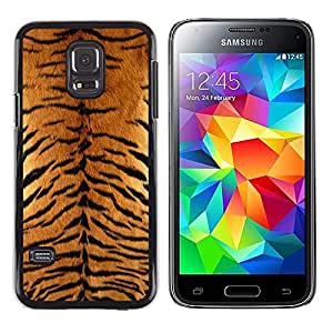 - WILD BIG TIGER CAT ANIMAL PATTERN FURRY - - Monedero pared Design Premium cuero del tir???¡¯???€????€?????n magn???¡¯&
