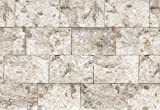 Cheap Komar 8-740 8-Panels 12-Foot 1-Inch by 8-Foot 4-Inch Birch Wall Mural