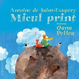 Micul prinț Audiobook