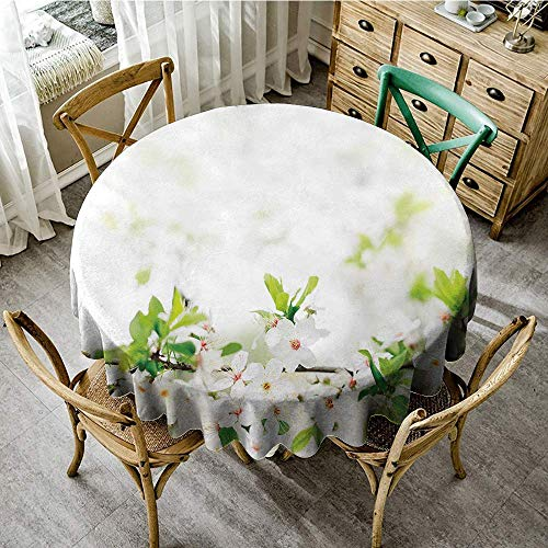 DONEECKL Washable Tablecloth Flower White Springtime Blossoms on Tree Branch Freshness Garden Growth Seasonal Nature Excellent Durability D71 White Green from DONEECKL