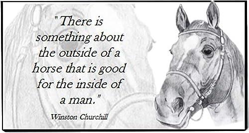 White Horse Checkbook Cover