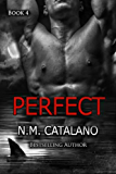 Perfect: Book 4, Stranger Stand Alone Series
