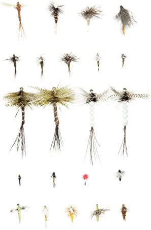 Fly Box with Flies and Trout Flies Nymphs Dries Wet Trout Fly Fishing Flies GW