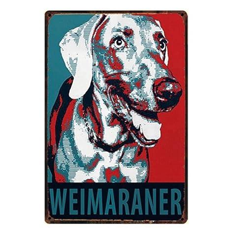 Cartel Metalicas Decoración Cuidado con El Perro Schnauzer ...